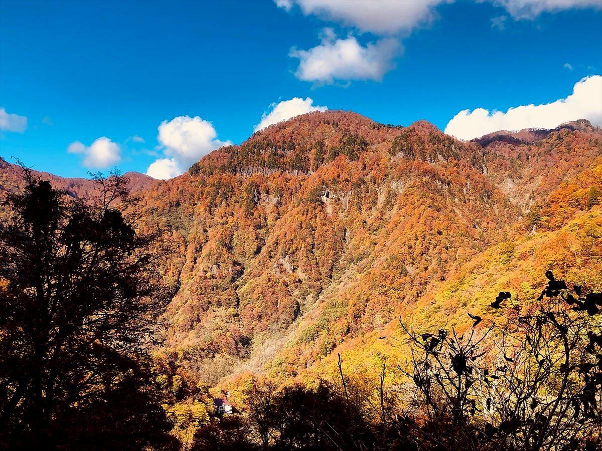紅葉鮮やかな裏山(猿ヶ浄土)